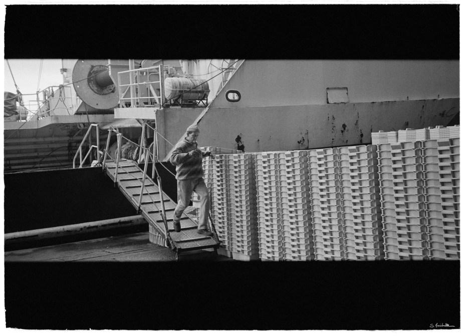 Port de Boulogne sur Mer - 62
