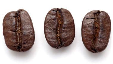 Kaffe-bønne