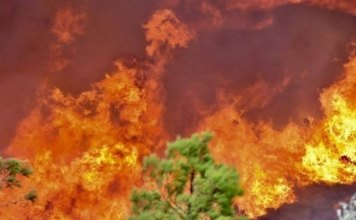 πυρκαγιές Αττική