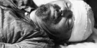 δολοφονία Τρότσκι, εγγονός, Εστέμπαν Βολκώφ