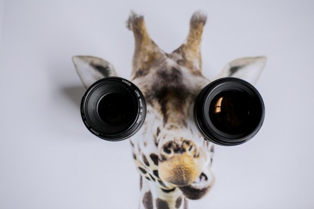 Symbolizes need to look through multiple lenses when analyzing real estate