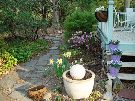 My Entry Garden in April of the artist, Mary Ahern