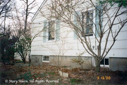 Small basement windows in the rear of house in 2000