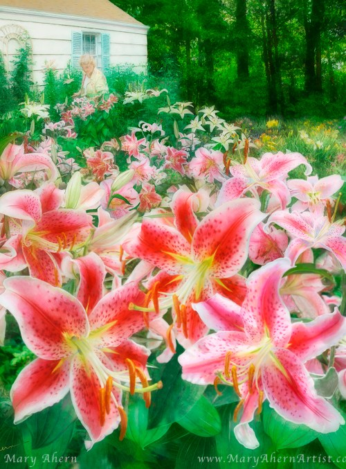 Mary's Dream Garden
