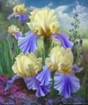 Ellen's Irises