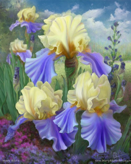Ellen's Irises by the Artist, Mary Ahern