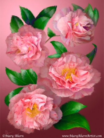 Pink Camellias - Painting by Mary Ahern Artist