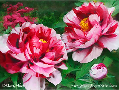 Fire Flame Peony - Painting by Mary Ahern Artist