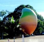 big-mango