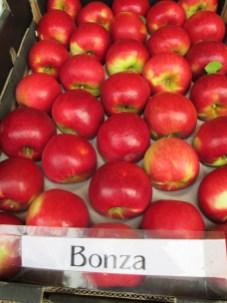 Bonza Apples grown in Harcourt, Victoria