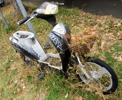 grafitti bike