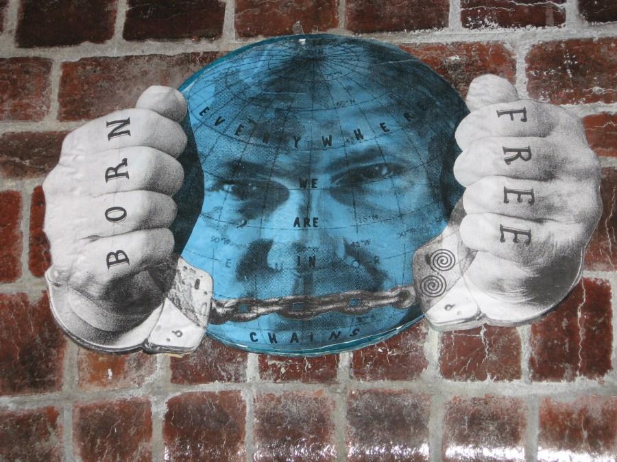 Phoenix the Street Artist | Born Free