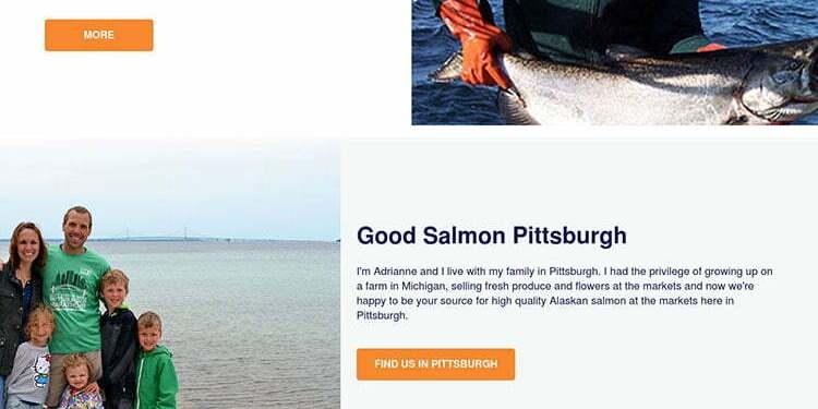Goodsalmon.com portfolio link