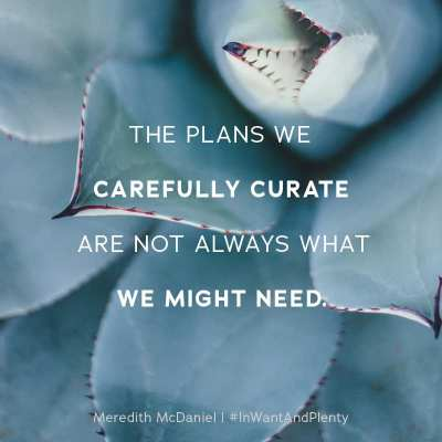 The plans we carefully curate are not always what we might need. - Meredith McDaniel, quote from In Want + Plenty