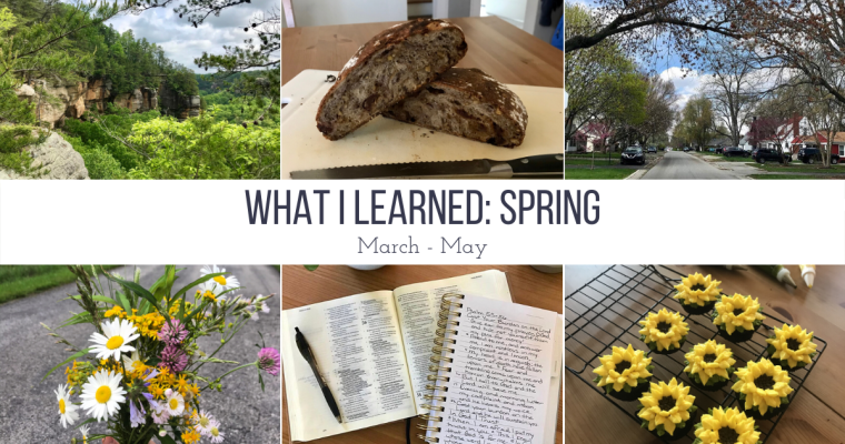 7 Things I Learned This Spring