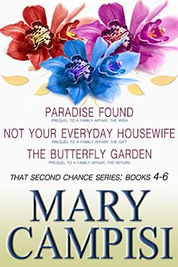 That Second Chance Boxed Set 2 by Mary Campisi