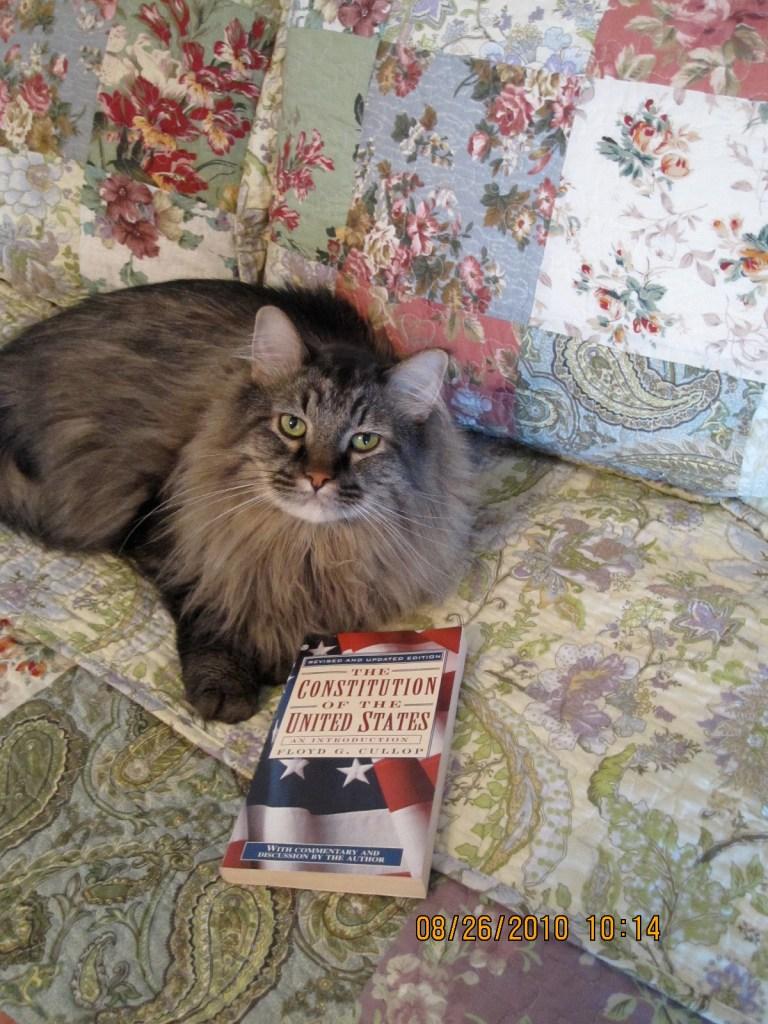 Franklin goes Con Law!