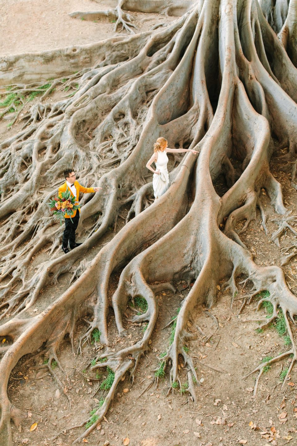 Couple at Balboa Park Moreton Bay Fig by Mary Costa Photography