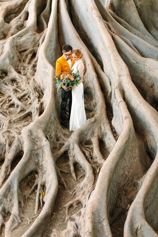 Bride and groom in Fig Tree roots - www.marycostaweddings.com