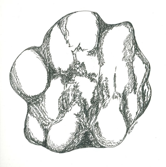 Imaginary rock that looks like a fist, Micron pen, Mary Warner, 2014.