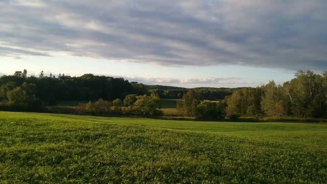 The view from the hill where the wedding tent stood. September 6, 2016.