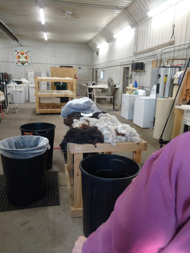 The Old Creamery Woolen Mill, Randall, MN, 2018. Interior scene of about half of the space. To the right, out of camera range, is a four-section sink, where the wool is carefully washed, but not agitated (or it would become felt).