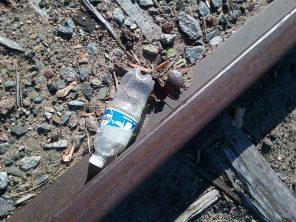 Discarded water bottle, 2018.