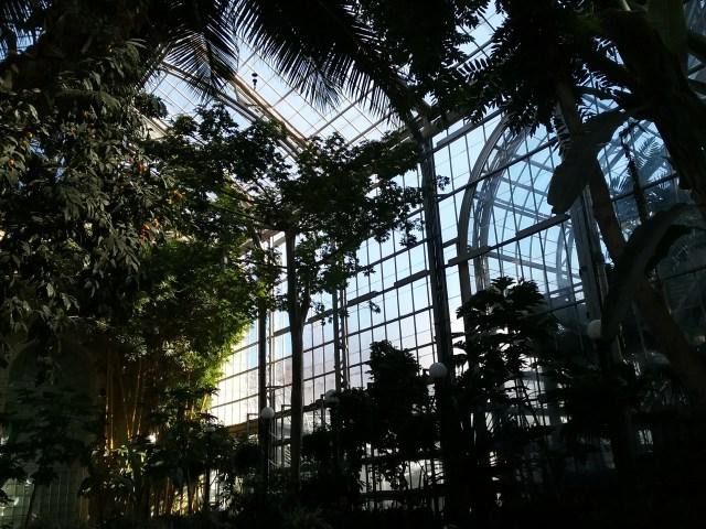 National Botanical Garden, 2019.