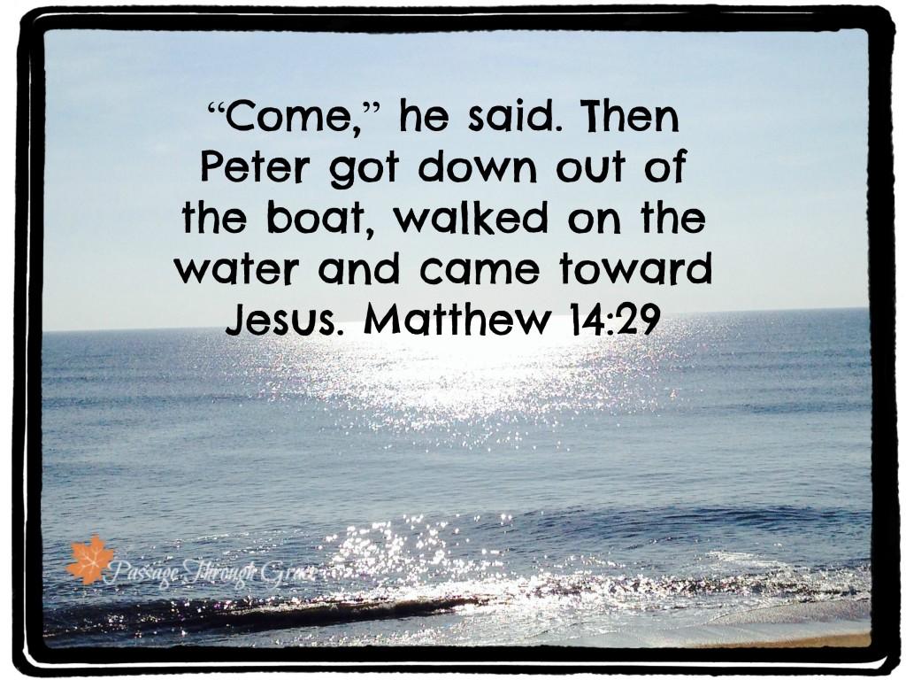 Matthew 14-29