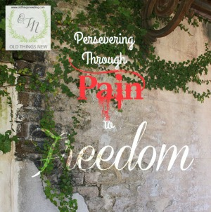 From Pain to Freedom ~ Perseverance Part 7
