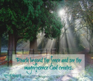 Sabbath Offerings ~ Fences