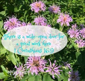 Sabbath Offerings ~ Open Wide