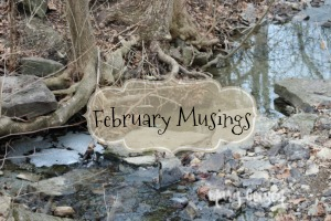 Monthly Musings ~ February 2018