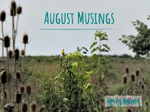 Monthly Musings ~ August 2018