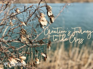 Creation's Journey to the Cross