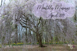 Monthly Musings ~ April 2019
