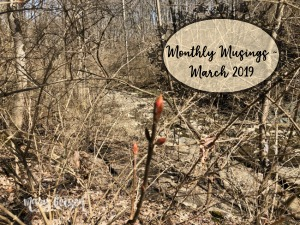 Monthly Musings ~ March 2019 + Book review & Giveaway