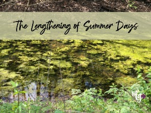 The Lengthening of Summer Days