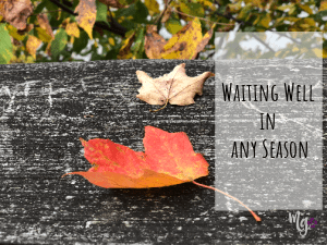 Waiting Well in any Season … and Book Release Day!
