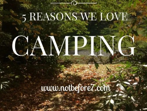 5 reasons that I love camping with my family even though I hate sleeping in the tent :)