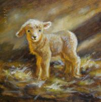 Mary Iselin Fine Art - More Speep and Lamb Paintings