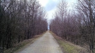 This section of the Friendship Trail is much prettier with green leaves.
