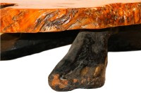 Mid Century Live Edge Wood Tree Slab Coffee Table