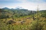 Mt. Rainier National Park, August 2016