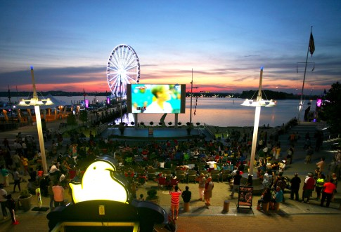 Movies-on-the-potomac-picture