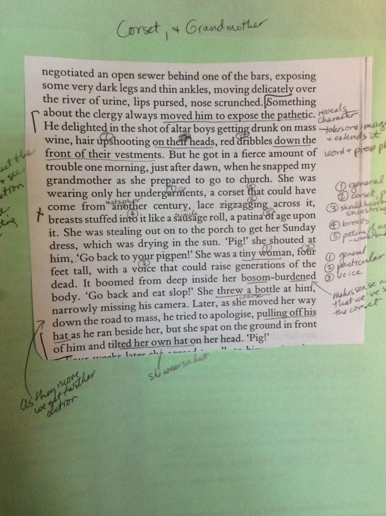 descriptive sentences of Colum McCann