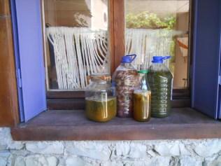 plantkleuren-fermentatie