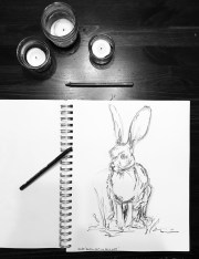 Rabbit, graphite