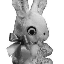 Begging Bunny