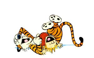 Calvin-Hobbes